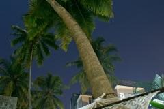 Гамак под пальмой. Северное Гоа. Индия