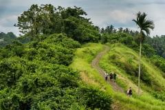 Пейзажи острова Бали. Индонезия.