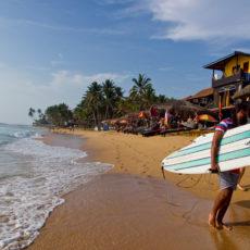 Шри-Ланка. Страна чая, диких слонов и сёрфинга.